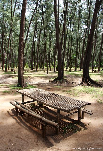 Picnic tables in Anawangin Cove San Antonio Zambales