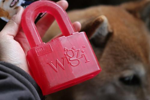 Lock n Play