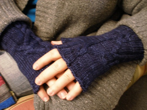 Political Process Mitts