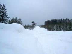 Trek to Winter Cabin