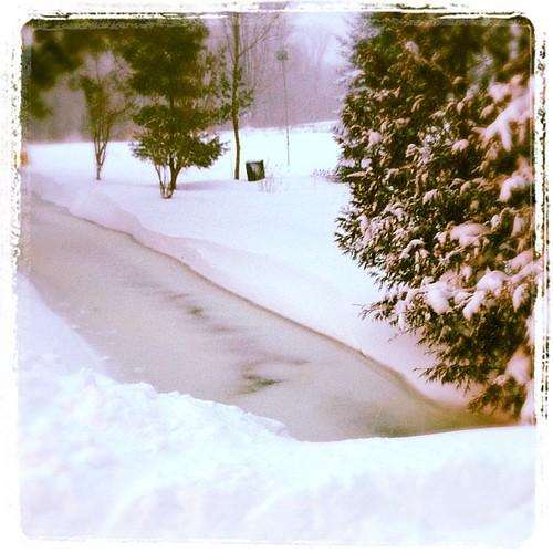Jan 11 -  water {my frozen creek} #fmsphotoaday