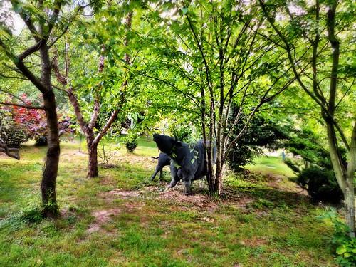 Giovanni's Garden 2012 by SpatzMe