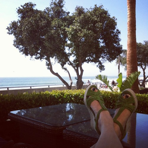 This is how I'm spending my lunch hour to refocus and gather for my 1pm presentation #craftcation #makers2013 #californiasunshine #knitting