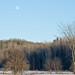 Moon over the Escarpment