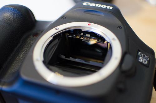 Canon 5D Shim