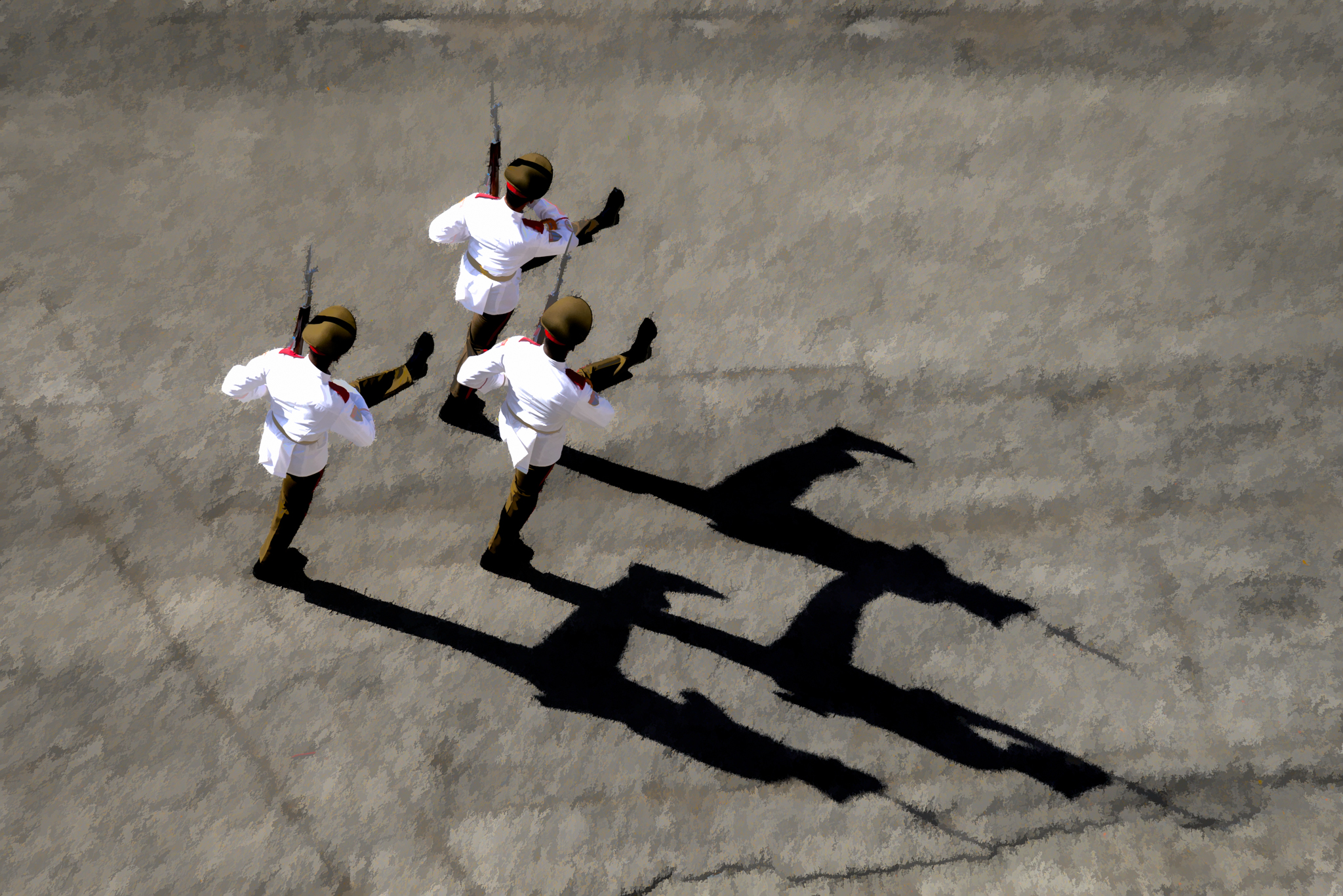 Honor Guard #2 - Havana - 2013