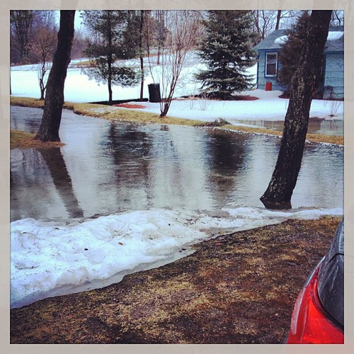 Mar 12 - 'O' {my stream has OVER-FLOWED its banks due to last night's rain! #photoaday #princeedwardcounty #spring #flooding
