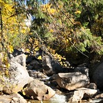 USA, PN Yosemite 13