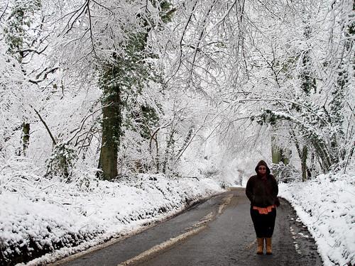 Cold in wonderland
