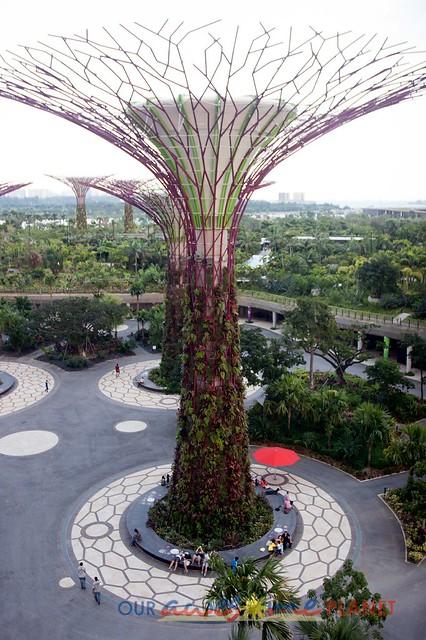 Your Singapore-17.jpg