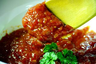 Tomato Sauce Scoop