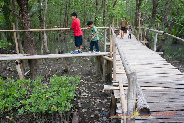 Bakhawan Eco-Park-83.jpg