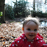 Bobbie in Moorland Forest