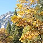 USA, PN Yosemite 09