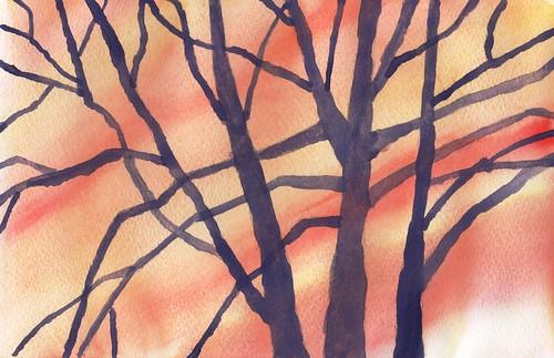 Bosque en Invierno 2