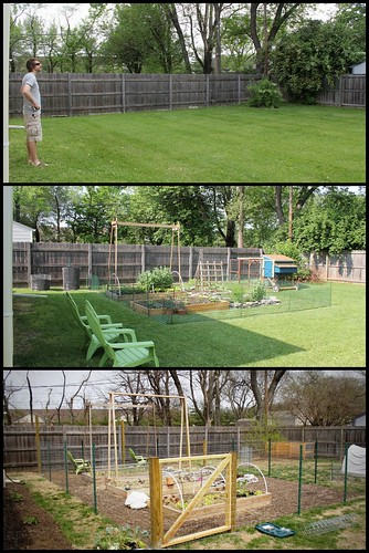 20130415. The backyard - year 1, year 2, and year 3.