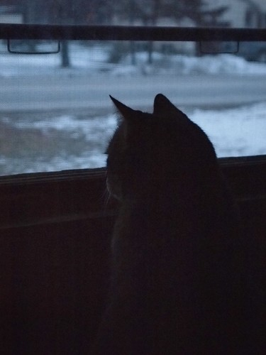 window watcher