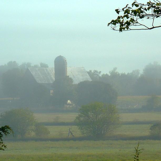 Apr 7 - dreamy {I love the dreamy atmosphere of early morning fog} #fmsphotoaday #fog #weather #barn