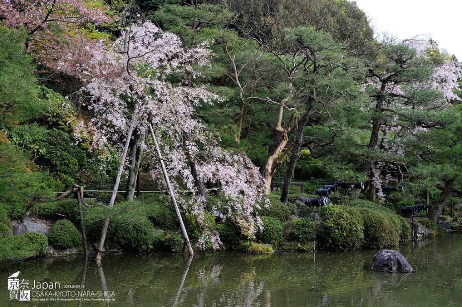 Japan-0518