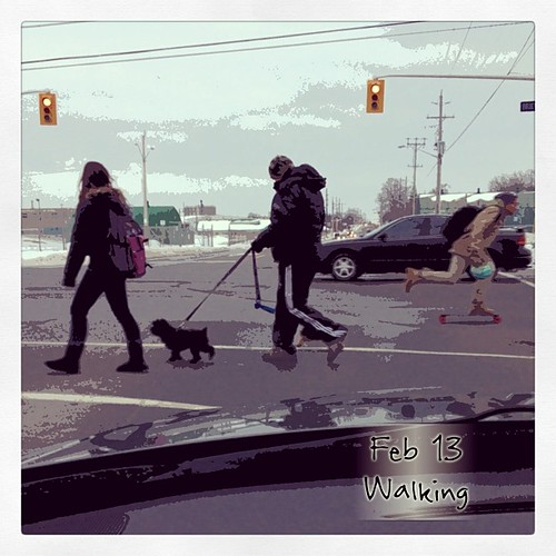 Feb 13 - walking {I'm not but these folks are!} #fmsphotoaday