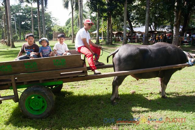 Balik Bukid-45.jpg