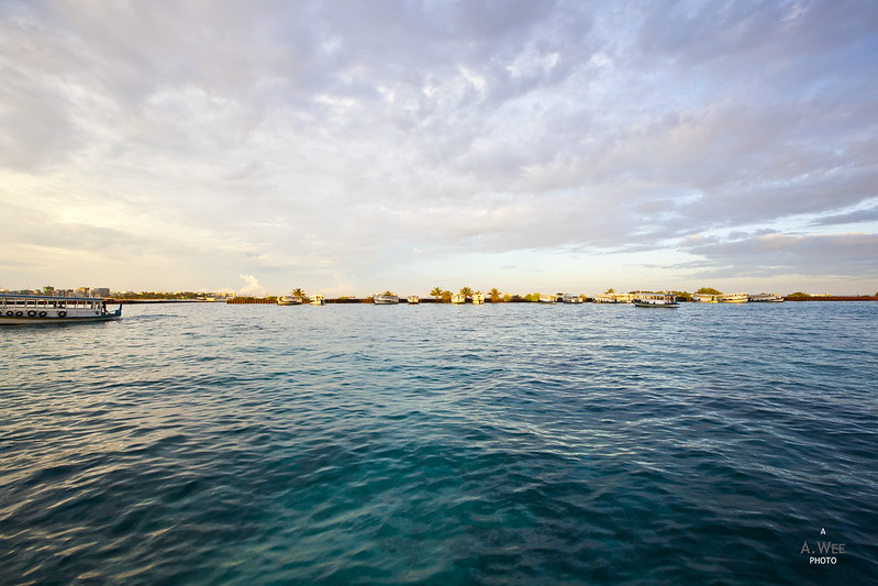 Maldives in the Morning