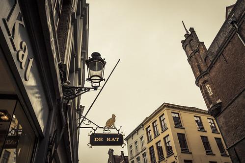 De Kat van Brugge (The Cat from Bruges) - Photo de Gilderic
