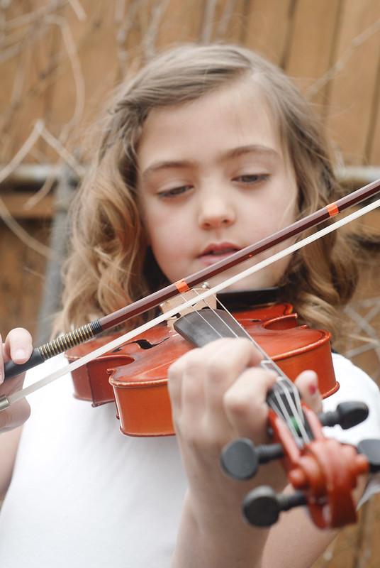 violin-6