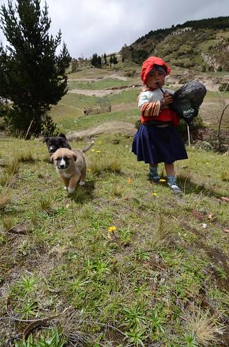 A Ecuadorian girl and her puppies