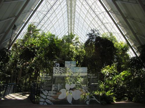 botanical gardens sub-tropical house