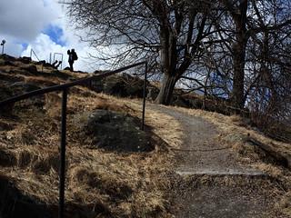 Path to Castle Lion [Sekor 35/2.8]