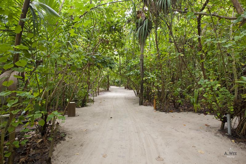 Garden Walkway to the Villas