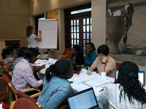 Group discussion during a workshop on integrating rights into livestock microcredit and value chain development programs for empowering women