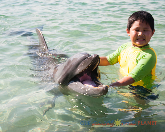 Beach Encounter with Dolphin-9.jpg