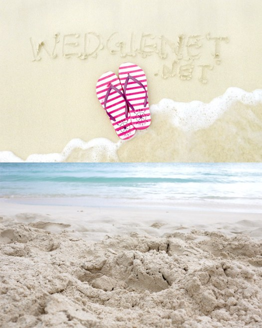 Wedgienet.net on the beach
