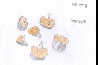 mushrooms - r