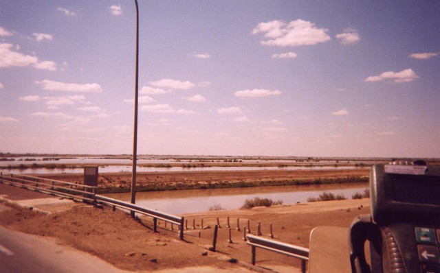 Picture from Samarra, Iraq