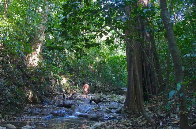 naturist 0007 Palenque, Chiapas, Mexico