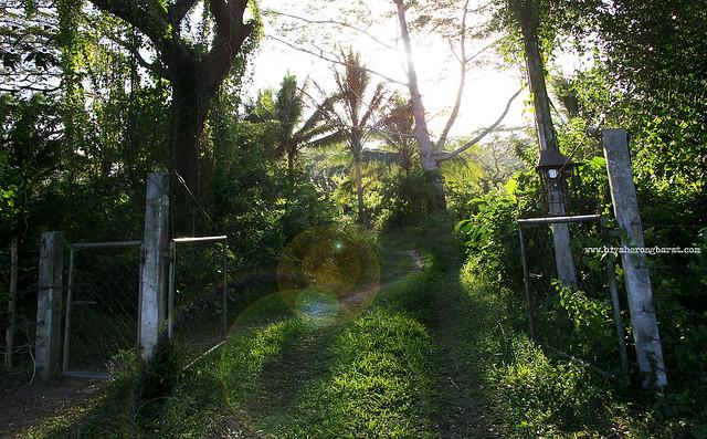 Tiaong Gubat Sanctuary Quezon Province