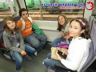 Excursiones en tren