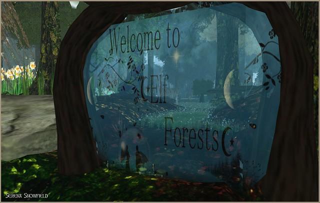 elfforest1