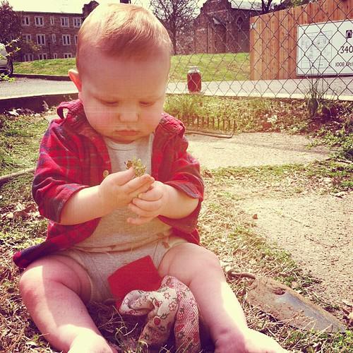 #finneganfrancis is gardening, y'all. #meganandfinngetnashy @nashvillefandfskool