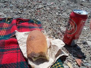 Leslie Spit Lunch