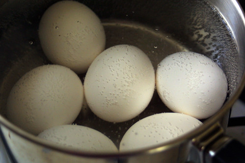 Eggs, ready to boil