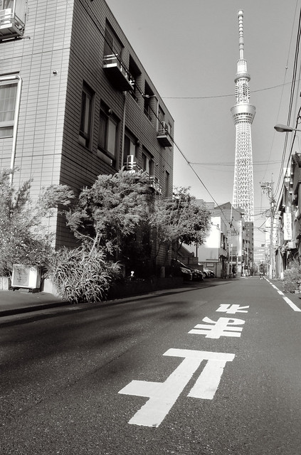 Tokyo Photography of the Tokyo SkyTree, by Pixelglo Photography