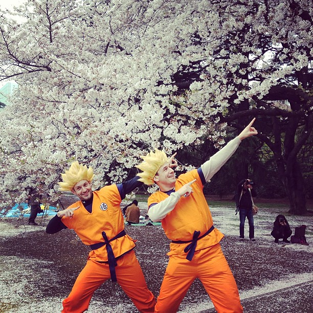 Went for an early morning walk at the Shinjuku-gyoen earlier. Ran into these rugby players dressed up in Dragonball costumes--they were a huge hit in the park! :D #onlyinjapan #sakura #cherryblossoms #anime #dragonball #travels #lovejapan #tokyo
