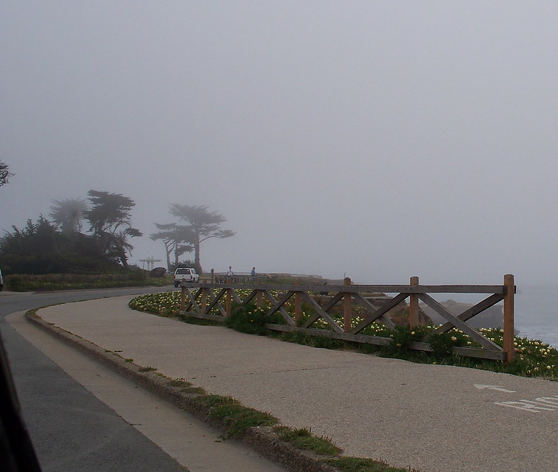fog above beach - ALK 4-2013