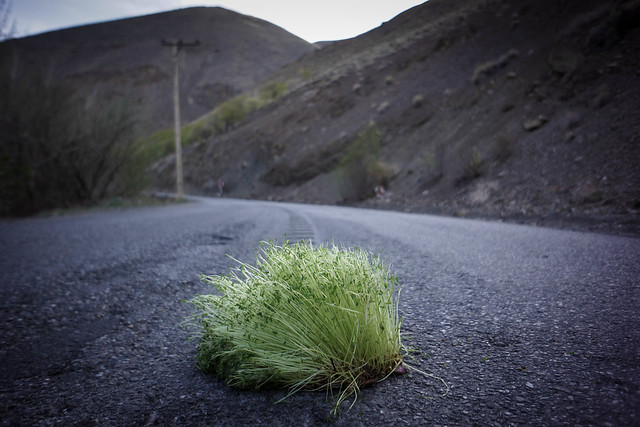 End of Norooz
