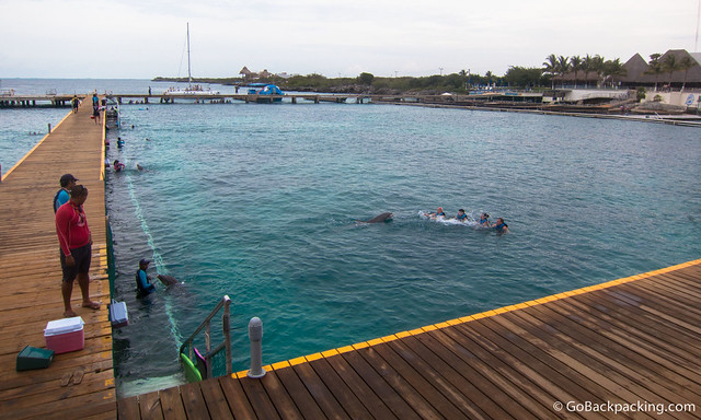 View of Dolphin Discovery on Isla Mujeres, upon arrival by ferry from Cancun