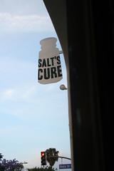 Salt's Cure